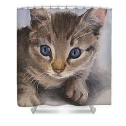 Shower Curtain featuring the painting Little Kitty by Jindra Noewi