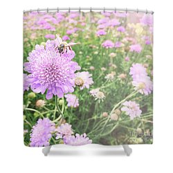 Shower Curtain featuring the photograph Little Lady On Scabiosa by Cindy Garber Iverson