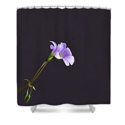 Little Lavender Flowers Shower Curtain