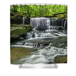 Little Mudlick Falls Shower Curtain