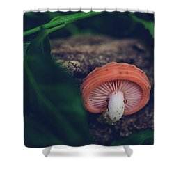 Little Mushroom Shower Curtain