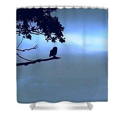 Little Owl Watching Shower Curtain