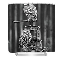 Little Owls Black And White Shower Curtain