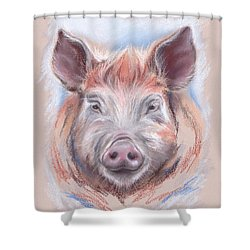 Little Pig Shower Curtain by MM Anderson
