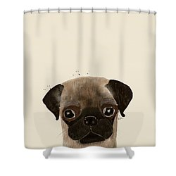 Shower Curtain featuring the photograph Little Pug by Bri B