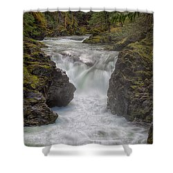 Little Qualicum Lower Falls Shower Curtain by Randy Hall
