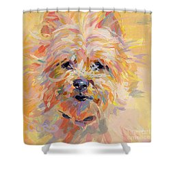 Little Ray Of Sunshine Shower Curtain by Kimberly Santini