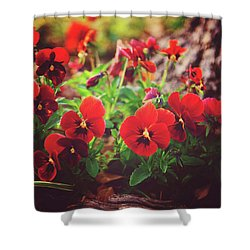 Little Red Pansies Shower Curtain by Toni Hopper