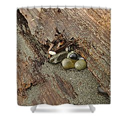 Shower Curtain featuring the photograph Little Rocks by Cendrine Marrouat
