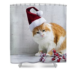 Little Santa Helper II Shower Curtain