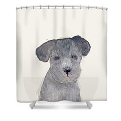Shower Curtain featuring the painting Little Schnauzer by Bri B
