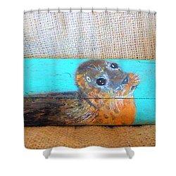 Little Seal Shower Curtain