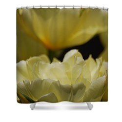 Shower Curtain featuring the photograph Little Teacups by Ramona Whiteaker