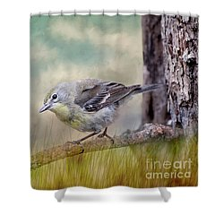 Little Warbler In Louisiana Winter Shower Curtain by Bonnie Barry