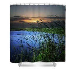 Little Waters Shower Curtain