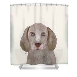 Shower Curtain featuring the painting little Weimaraner by Bri B