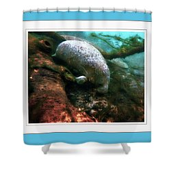 Little White Manatee Shower Curtain