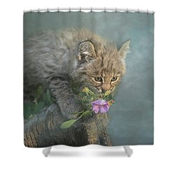 Shower Curtain featuring the digital art Little Wonders by Nicole Wilde