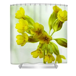 Little Yellow Flowers Close-up Shower Curtain