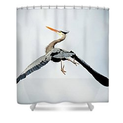 Live Free And Fly Shower Curtain
