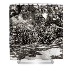 Live Oak Allee Infrared Shower Curtain