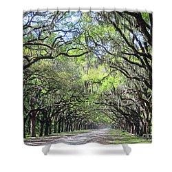 Live Oak Canopy Shower Curtain