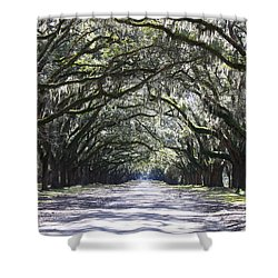 Live Oak Lane In Savannah Shower Curtain