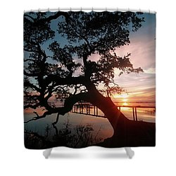 Shower Curtain featuring the photograph Live Oak Sunrise by Benanne Stiens