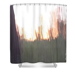 Shower Curtain featuring the photograph Live Oaks At Twilight by Brian Boyle