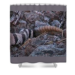 Live Rattles Shower Curtain