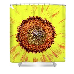 Live Simply Bloom Wildly Shower Curtain