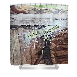 Living In The Moment - Dna Drama Shower Curtain