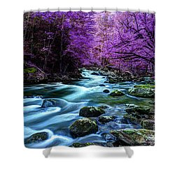 Living In Yesterday's Dream Shower Curtain by Michael Eingle