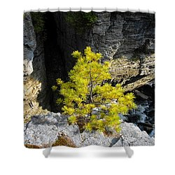 Living On The Edge Shower Curtain by David Lee Thompson