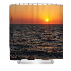 Shower Curtain featuring the photograph Living The Life by Robert Margetts