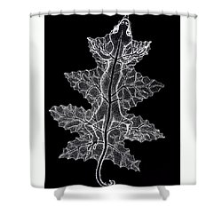 Lizard And Leaf Shower Curtain by Nick Gustafson
