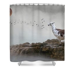 Llama Singing To The Moon Shower Curtain