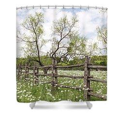 Llano County Wildflowers Shower Curtain