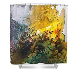 Llywelyn From Luxembourg Shower Curtain by Ed  Heaton