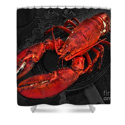 Lobstah Shower Curtain by William Fields