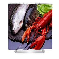Lobster And Trout Shower Curtain by The Irish Image Collection