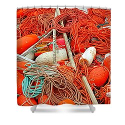 Lobster Season Shower Curtain
