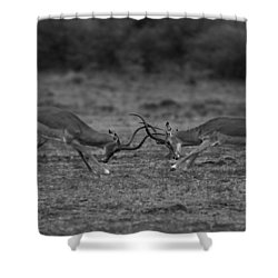 Locked Horns Shower Curtain