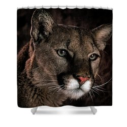 Locked Onto Prey Shower Curtain by Elaine Malott