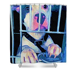 Shower Curtain featuring the digital art Locked Up by Kathy Tarochione