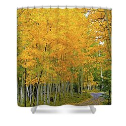 Shower Curtain featuring the photograph Lockett Meadow A Moment In Time by Broderick Delaney