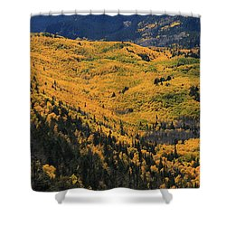 Lockett Meadow Shines Shower Curtain