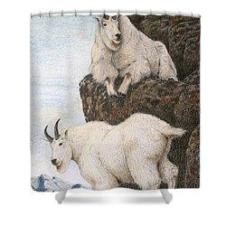 Lofty Perch Shower Curtain