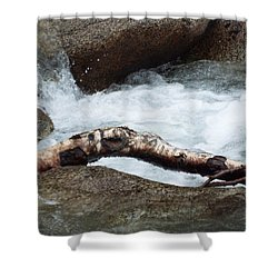 Log At White Water Shower Curtain