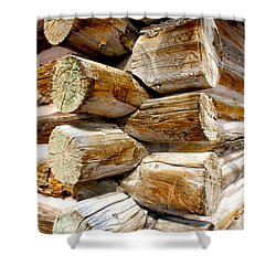 Log Cabin Corner Shower Curtain